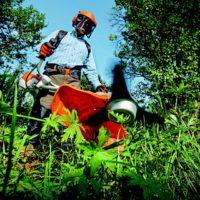 Un jardinier paysagiste doit-il souscrire une multirisque professionnelle ?