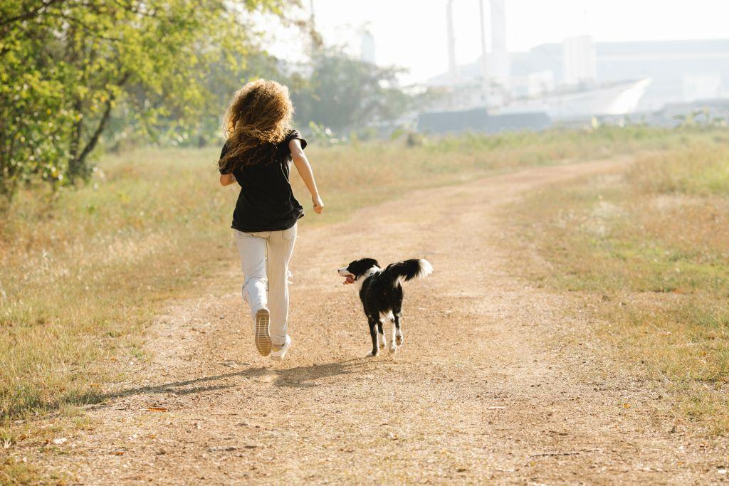 exercice chien